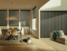 designerrollerskyline_powerglidetwoone_livingroom