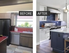 before-after-seal-beachii-1